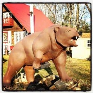New Hampshire Bear