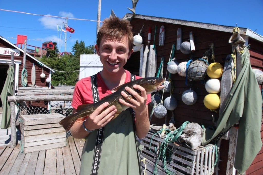 Cod Jigging Newfoundland Twillingate